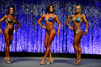 DSC_6000 Figure Overall Comparisons and Award 2015 Fitness New England Championships
