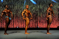 DSC_5836 Musclemania Overall Comparisons and Award 2015 Fitness New England Championships