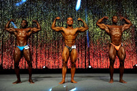 DSC_5844 Musclemania Overall Comparisons and Award 2015 Fitness New England Championships