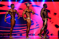 14 DSC_5422 Musclemania World Overall Comparisons and Award 2015 Fitness America Weekend