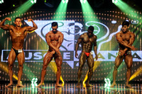 19 DSC_0069.JPG Musclemania Open Overall Comparisons and Award 2016 Fitness America Weekend