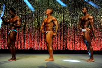 DSC_5832 Musclemania Overall Comparisons and Award 2015 Fitness New England Championships