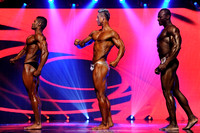 9 DSC_5417 Musclemania World Overall Comparisons and Award 2015 Fitness America Weekend